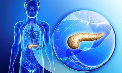 При панкреатитах в поджелудочной железе появляются изменения, которые носят название фиброз поджелудочной железы