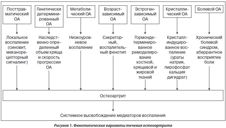 варианты течения остеоартрита
